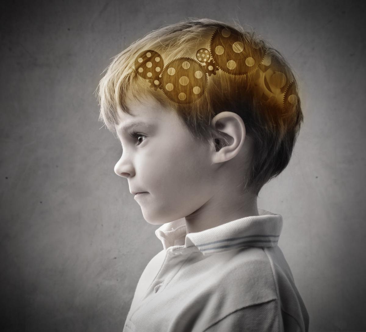 boy-brain-gears